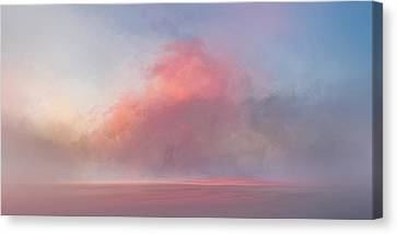 Dusty Rose Canvas Print by Lonnie Christopher