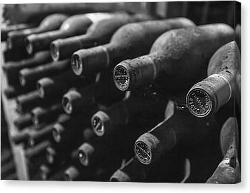 Dusty Wine Bottles Canvas Print by Georgia Fowler