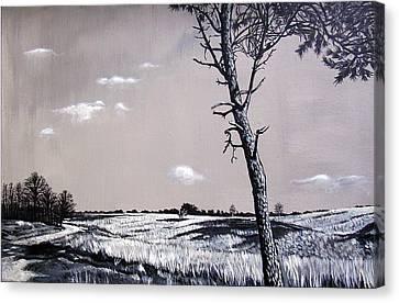 Dutch Heathland Canvas Print by Arie Van der Wijst