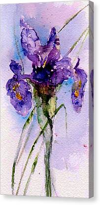 Dutch Iris Canvas Print by Anne Duke