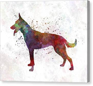 Dutch Shepherd Dog In Watercolor Canvas Print