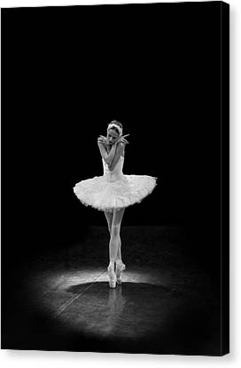 Young St. Clare Canvas Print - Dying Swan 5 Alternative Size by Clare Bambers