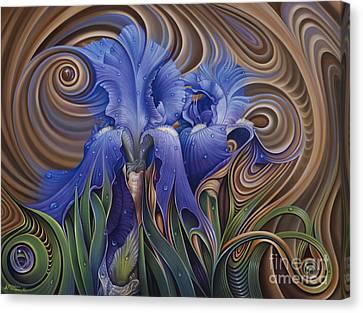 Dynamic Iris Canvas Print by Ricardo Chavez-Mendez