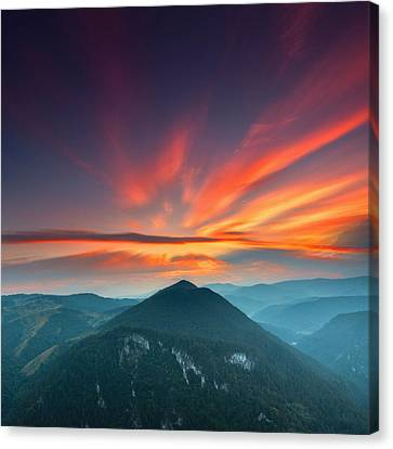 Eagle Eye Canvas Print by Evgeni Dinev