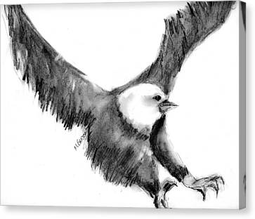 Canvas Print featuring the drawing Eagle In Flight by Marilyn Barton