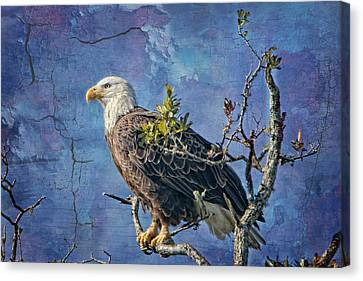 Eagle In The Eye Of The Storm Canvas Print by Bonnie Barry