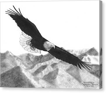 Eagle Canvas Print by James M Thomas