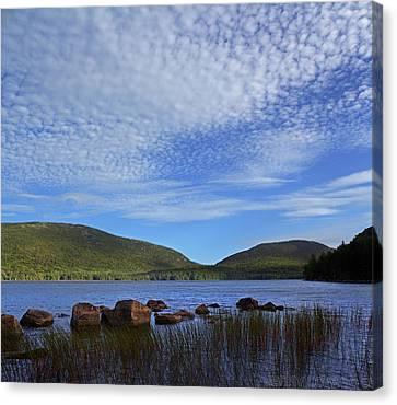 Eagle Lake Canvas Print by Jerry LoFaro