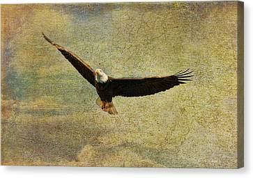 Eagle Medicine Canvas Print