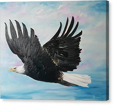 Eagle On A Mission      11 Canvas Print
