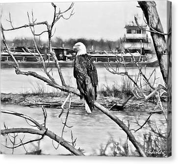 Eagle On The Illinois River Canvas Print