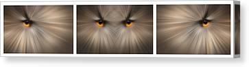 Eagle Owl Eye Triptych Canvas Print