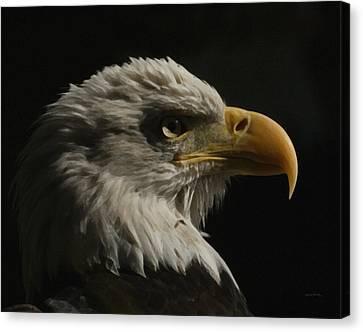 Eagle Profile 3 Canvas Print
