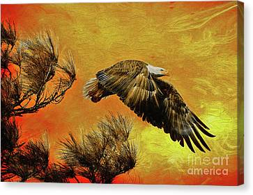 Canvas Print featuring the painting Eagle Series Strength by Deborah Benoit