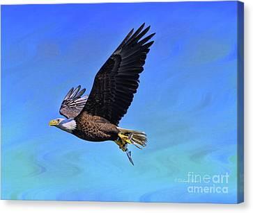 Canvas Print featuring the photograph Eagle Series Success by Deborah Benoit