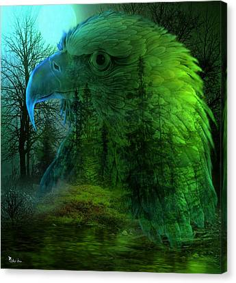 Eagle Woods Canvas Print by Ali Oppy