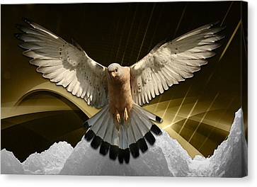 Eagles Fly Canvas Print