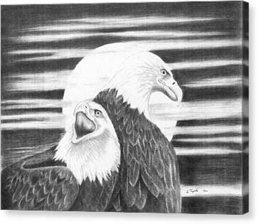 Eagles Canvas Print by Lawrence Tripoli