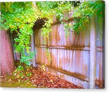 Early Autumn Fence And Vines Canvas Print