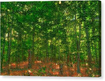 Early Autumn On Maple Ridge Canvas Print