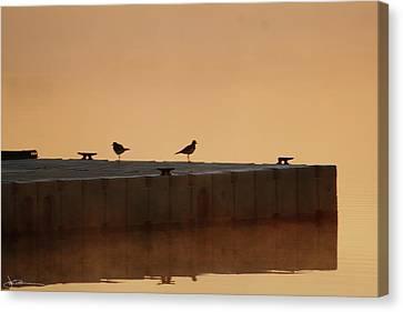 Early Birds Canvas Print