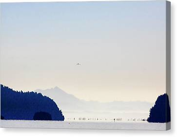Early Morning Ala Spit Whidbey Island Canvas Print