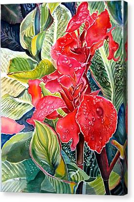 Early Morning Cannas  Canvas Print by Therese AbouNader