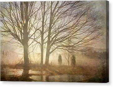 Early Morning Fog Canvas Print by Betty  Pauwels