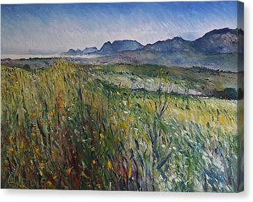 Early Morning Fog In The Foothills Of The Overberg Range Of Mountains Near Heidelberg South Africa. Canvas Print by Enver Larney