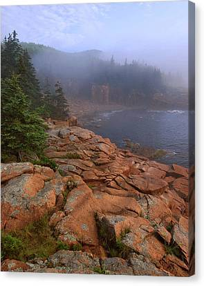 Down East Canvas Print featuring the photograph Early Morning Fog  by Stephen  Vecchiotti