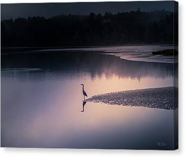 Early Morning Greeter Canvas Print