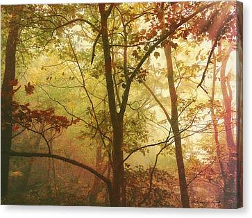 Canvas Print featuring the photograph Early Morning Mist by Bellesouth Studio