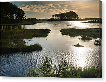 Chincoteague Canvas Print - Early Morning On Beach Drive IIi by Steven Ainsworth