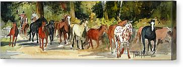 Early Morning Roundup Canvas Print by Trish McKinney