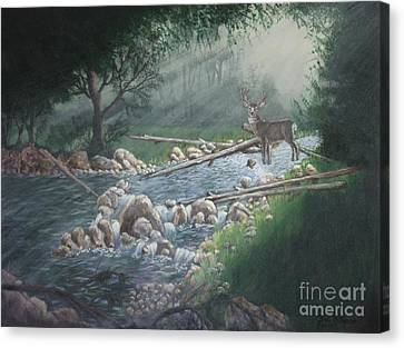 Early Morning Spectacle Canvas Print by Bob Williams