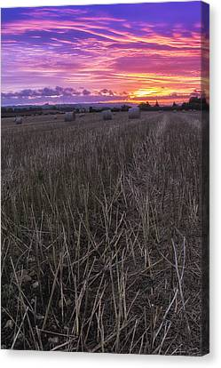 Canvas Print featuring the photograph Early Rise  by Stewart Scott