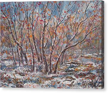 Early Snow. Canvas Print