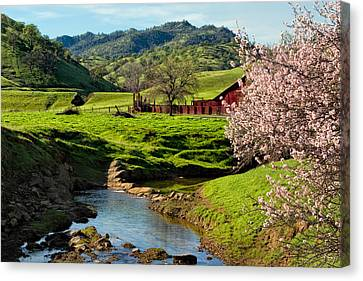 Pastureland Canvas Print - Early Spring In The Valley by Kathleen Bishop