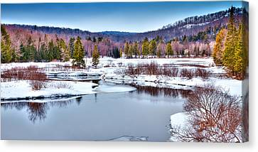 Early Spring In Thendara Canvas Print by David Patterson