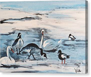 Early Spring Thaw With Ducks And Geese Canvas Print by Judy Via-Wolff