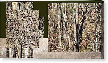 Early Spring Walk -  Canvas Print