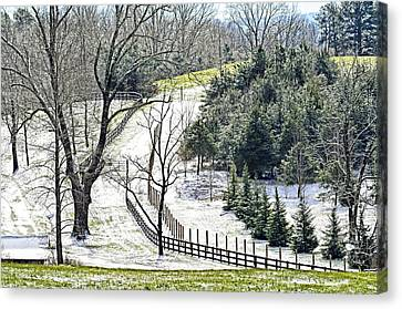 Early Winter Pasture Canvas Print by Susan Leggett