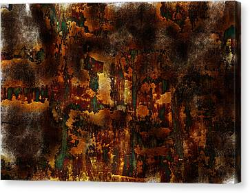 Earth Tones Canvas Print by Frank Tschakert