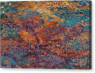 Earth Tones Canvas Print by Tim Gainey
