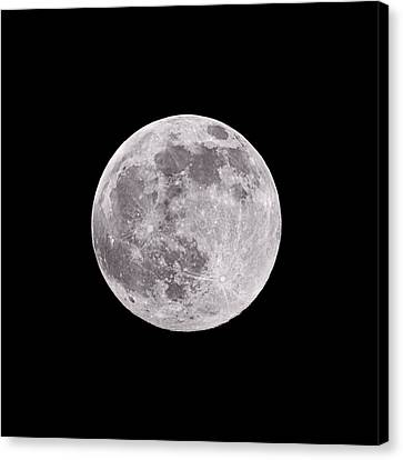 Earth's Moon Canvas Print by Steve Gadomski