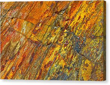 Earths Palette Canvas Print by Karon Melillo DeVega
