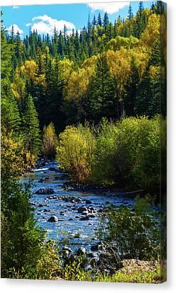 East Fork Autumn Canvas Print