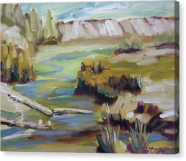 East Of Collbran Canvas Print by Robert Martin