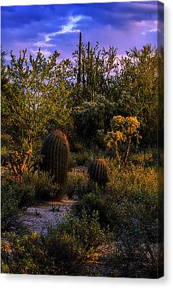 East Of Sunset V40 Canvas Print