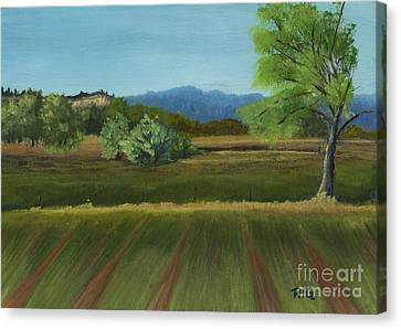 East View Canvas Print